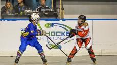 Mundial de Hockey en línea